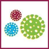 تدابير الوقاية الأساسية من فيروس كورونا (كوفيد-19)